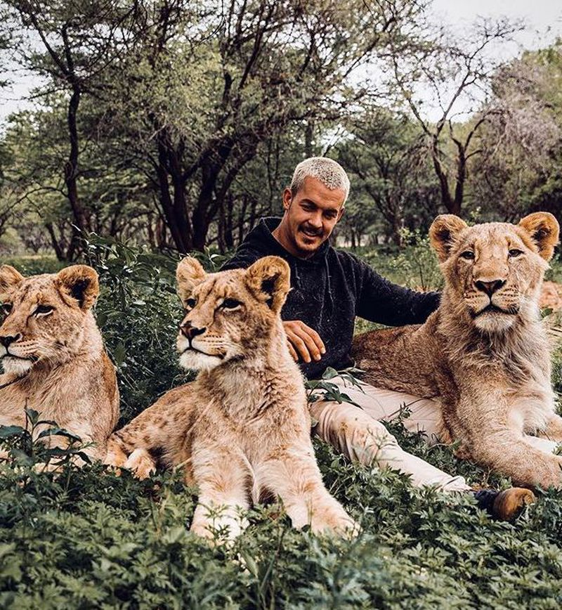 """Przytula lwy, bawi się z hieną i gepardami. """"Ten facet powinien mieć program na Netflixie!"""" - 2"""