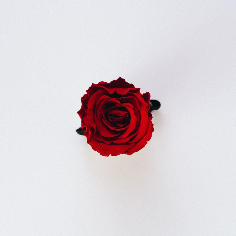 Płatki róży zamiast szminki...