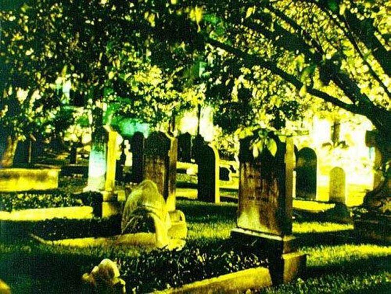 Najstraszniejsze zdjęcia wykonane na cmentarzach - 1